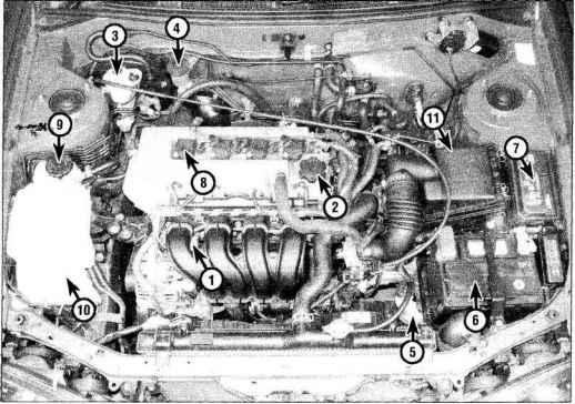 toyota echo manual transmission fluid check