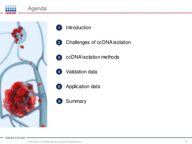 qiagen dna extraction kit manual